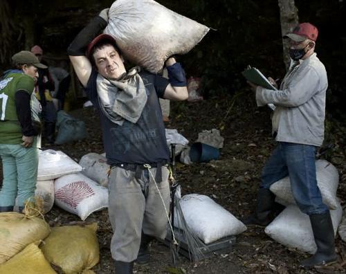 Venezuelan Refugees Join Colombia's Workforce