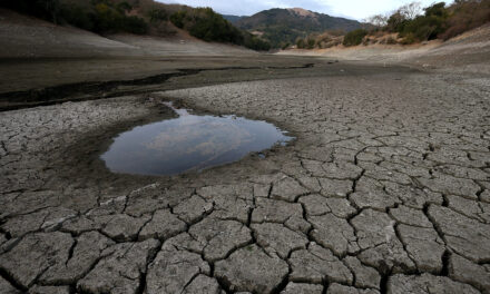 California Drought: Another Result of Democratic Leadership