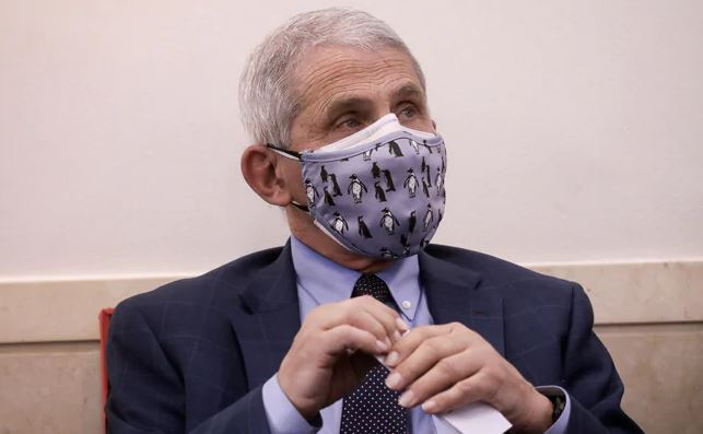 Why the Dr. Fauci Email Leak Matters: A Deep Dive Into Covid Lies
